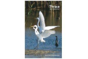 ThraceGR