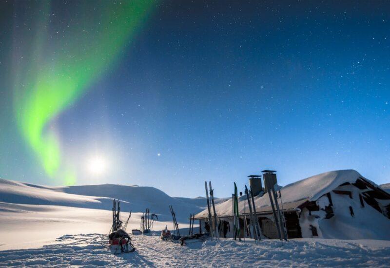 Nordix-Finland-Dog5